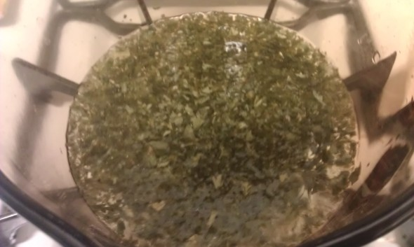 Steeping Parsley